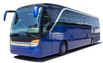 Busreis 29 juni Kinderdijk